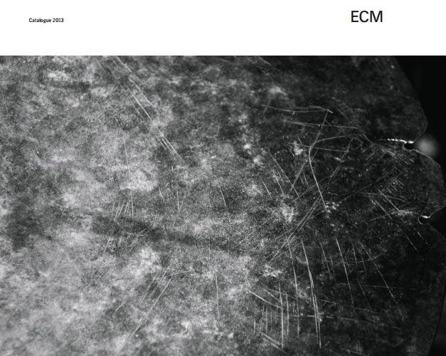 ECM 2013